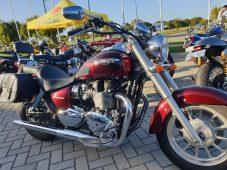 2014 Triumph America $9750